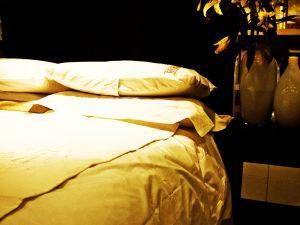stops snoring pillow