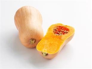 butternut squash fruit
