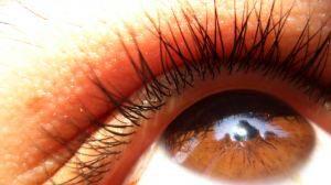 how to grow eyelashes back